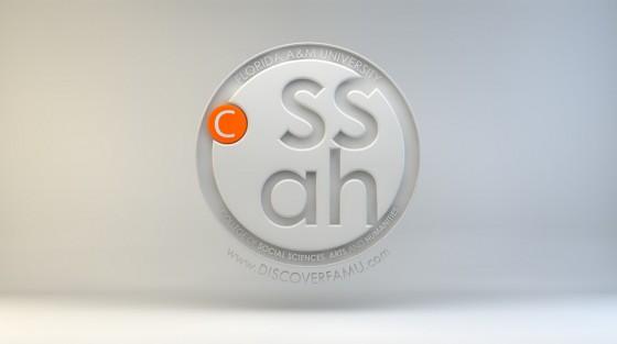 CSSAH 3D