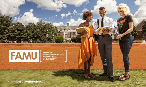 FAMU Search Piece Cover
